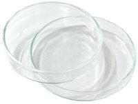 Placa de petri vidrio 80x15mm